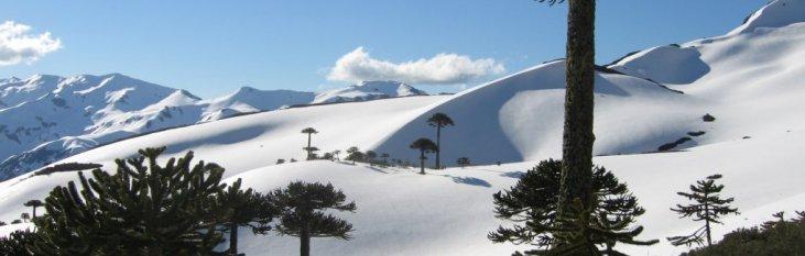 sierra, nevada, spanje, park
